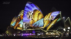 Butterfly oprea (JacStar photography) Tags: city people colour canon boat cityscape photos harbour sydney australia lunapark operahouse harbourbridge sydneyharbour sydneyoperahouse sydneyskyline pictuers laserlight sydney2014