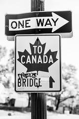 To Canada (Thomas Hawk) Tags: usa canada unitedstates michigan unitedstatesofamerica detroit oneway corktown fav10