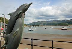 Barmouth (The Crewe Chronicler) Tags: uk sea sculpture wales canon eos harbour dolphin estuary tamron barmouth barmouthbridge eos60d