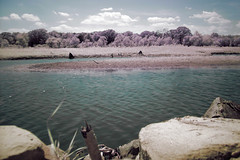 DSC05509_IR (Walker the Texas Ranger) Tags: park lake ir ray texas state sony infrared roberts johnston unit dscv1