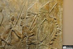 Wall reliefs depicting a battle scene, Nimrud (Assyria, Babylon, Akkad, Sumer...) Tags: museum king iraq royal battle scene vultures british chariot mesopotamia enemy prisoner assyria assyrian ashurnasirpal nimrud kalhu northwestpalace calah
