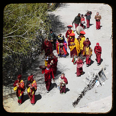 After The Procession (designldg) Tags: travel red people india man heritage yellow square photography freedom asia colours peace view symbol infinity buddhist faith religion dream culture atmosphere monk buddhism hills monastery human soul devotion tibetan tradition spiritual shanti devotee enlightenment dharma timeless lightness ladakh garments quietness hemis tibetanplateau jammuandkashmir hemisgompa celebratehumanity panasonicdmcfz18 laurentgoldstein