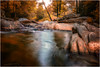 """Tranquility, Steele Creek, NC"" by dcimageforge Danny Collado PixelWorks Photography"
