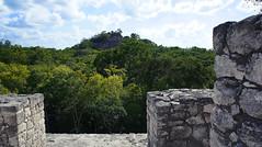 Calakmul (puntokom) Tags: méxico arquitectura maya selva paisaje ruinas mayas roca campeche airelibre calakmul zonaarqueológica prehispánico cantería zoomorfa arquitecturazoomorfa rìobec
