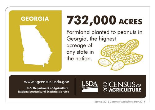 birds georgia texas farmers nuts cotton poultry eggs peaches organic producers renewableenergy ranchers censusofagriculture