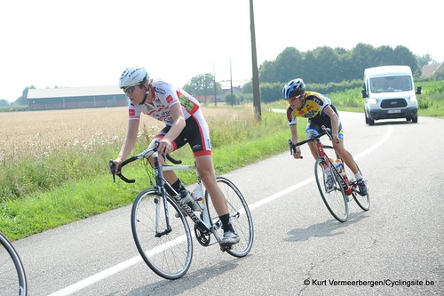 Geel Oosterlo  (202)