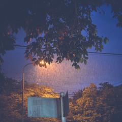 giá trời đừng mưa, và anh đừng nhớ (Quoc Bao Truong) Tags: nikon vietnam viet hue nam nikonian