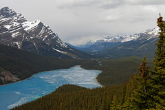 Peyto Lake (Chris@Issy) Tags: voyage travel blue vacation lake canada mountains forest landscape rockies vacances rocky lac bleu alberta paysage fort rocheuses montagnes peyto chrisissy atempsperdu