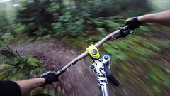 Two Trees (Dan Talbot MTB) Tags: mountain woods ns bikes downhill blackburn dh biking mtb soda freeride billinge gopro
