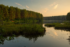 Evening light at Pog Lake. (timcorbin) Tags: ontario canada canon algonquin poglake leefilters