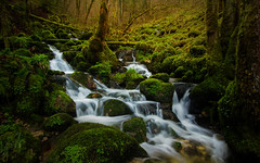 Cascade of Soubey - Jura - Switzerland (Rogg4n) Tags: soubey jura switzerland cascade waterfall longexposure forest nature water stream river doubs canoneos100d moss green humid flow woods tree ndfilter suisse enchanted wonder hoya fairytale torrent efs1018mmf4556isstm landscape