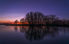 A Beautiful Evening (RigieNL) Tags: sundown sunset landscape nature water landschap natuur limburg nederland netherlands sony sonya6000 zonsondergang sun tree trees
