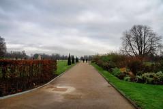 Caminhando no Parque (Arimm) Tags: arimm park path tree grass pavement walk