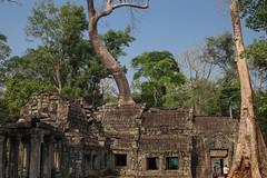 Angkor ( Philippe L PhotoGraphy ) Tags: cambodge saigonhanoi asiedusudest asie vietnam krongsiemreap siemreapprovince kh