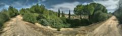 Italica. Santiponce (Sevilla) (jose de sp) Tags: santiponce italica anfiteatro sevilla andalucia spain roma