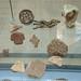 DSCN7384c Coptic seals. Excavation Museum. Elephantine, Aswan, Egypt.