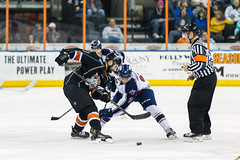 "Missouri Mavericks vs. Tulsa Oilers, March 5, 2017, Silverstein Eye Centers Arena, Independence, Missouri.  Photo: John Howe / Howe Creative Photography • <a style=""font-size:0.8em;"" href=""http://www.flickr.com/photos/134016632@N02/33273248826/"" target=""_blank"">View on Flickr</a>"