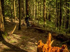 Seb flash harry (kendyck1) Tags: fromme mountainbike mountainbiking spring sebastien snowbiking