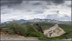 Denali National Parck (Angel G. Molero) Tags: healy alaska estadosunidos us
