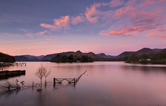 Stunning Sunrise, Crow Park, Derwentwater, Lake District (MelvinNicholsonPhotography) Tags: crowpark derwentwater keswick lakedistrict cumrbia lakes sunrise pink clouds colour gate fence boats island trees lakedistrictnationalpark stunning melvinnicholsonphotography gitzogt3543xls manfrotto410 haidafilters mindshift