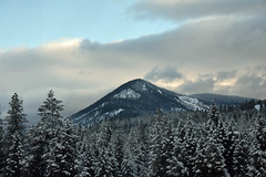 Montana (Adventurer Dustin Holmes) Tags: 2017 mountain scenery montana landscape scenic outdoors empirebuilder traintrip traintravel unitedstatesofamerica america trees forest westernmontana