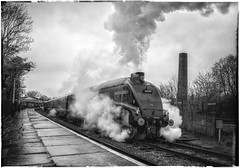 Pacific's in the Valley (JohnN60) Tags: blackwhite blackandwhite southafrica of union gresley locomotive steam ramsbottom elr pacific a4 60009
