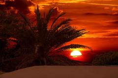 LAHAINA DUNES (paulosabado) Tags: lahaina maui sunset sand dune