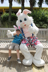 Easter Bunny 051