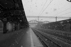 L1004286_v1 (Sigfrid Lundberg) Tags: lund tracks lundc sweden skåne platform snowfall railwaytracks leica aposummicronm 50mmf20asph