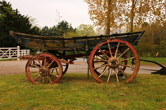 Old Cart (Tony Howsham) Tags: canon eos70d sigma 18250 os fritton norfolk east anglia england great britain uk old wooden cart horse drawn