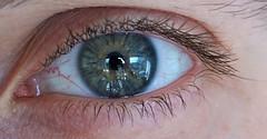 I see your true colors shining through (wani_no_ko) Tags: eye eyes auge closeup