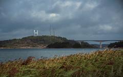 Tjörnbron (LexSwamp) Tags: tjörnbron tjörn bridge reeds birds epic lake sea coast scandinavia sweden norway clouds outdoor landscape architecture