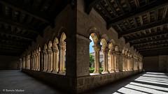 DSC6762 Claustro del Monasterio de Santa María la Real de Nieva, finales del siglo XIV y principios del siglo XV, (Segovia) (Ramón Muñoz - ARTE) Tags: monasterio de santa maría la real nieva claustro claustros