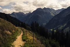 Kleinwalsertal (Netsrak) Tags: alps mountain alpen berg berge gebirge österreich at summer sommer kleinwalsertal mittelberg vorarlberg path way trail weg wanderweg nature natur cloud clouds wolke wolken