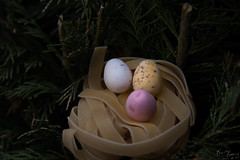 Easter Sunday (BeckiGroves) Tags: 365the2017edition 3652017 day106365 16apr17 easter egg nest tree pasta chocolate