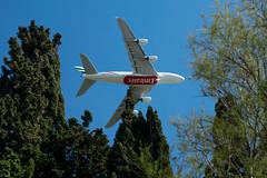 volando entre árboles (Sanz291) Tags: avion aviones arbol arboles vuelo bajo