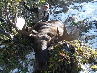 Alaska Dall Sheep Hunt & Moose Hunt 24