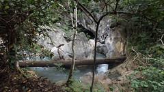 Ponte de Pedra (secomm.ufmt) Tags: agua nobres pontedepedra tronco