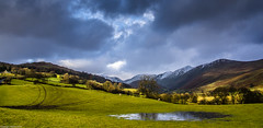 Grazing. (AlbOst) Tags: sunlight snow mountains rain clouds sheep lakedistrict hills grazing trolled