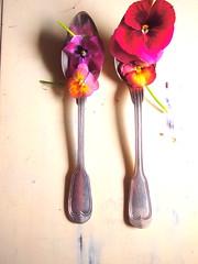 spoon,vintage,violas (ueha nochi) Tags: vintage spoon violas