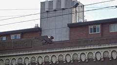 Flying Gargoyle (WryMuffin) Tags: gargoyle capitolhillseattle