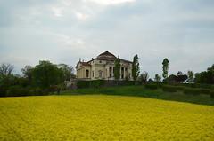 Villa Capra - La Rotonda [Vicenza - 12 April 2014] (Doc. Ing.) Tags: flowers italy yellow architecture unesco vi vicenza worldheritage palladio 2014 veneto nordest larotonda rapeflowers