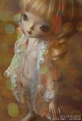 Golden Light (zaflikescreepydolls) Tags: ball doll bjd ariana jointed leekeworld resinaperture