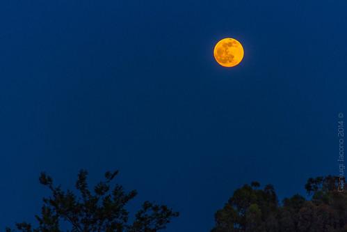 Luna rossa ischitana