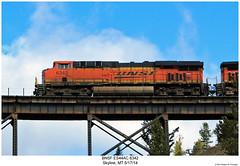 BNSF ES44AC 6342 (Robert W. Thomson) Tags: railroad skyline train montana diesel railway trains locomotive trainengine ge bnsf burlingtonnorthernsantafe gevo es44ac es44 evolutionseries sixaxle
