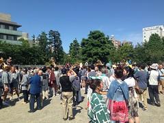 Sanja festival #3 @ Asakusa (Fuyuhiko) Tags: 3 festival asakusa  sanja
