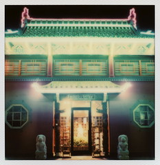Realm (tobysx70) Tags: california ca light toby color film home sign shop night project way polaroid sx70 for book la store los spring downtown neon chinatown nocturnal angeles decoration may housewares illuminated gifts tip cameras lions type instant week lit sonar hancock day5 gin ling dtla impossible realm roid the 2014 roidweek impossibleproject tobyhancock impossaroid