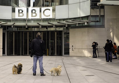 Two Dogs and a Paparazzi (stevedexteruk) Tags: new dog house london dogs photographer bbc broadcasting paparazzi piazza 2014 nbh