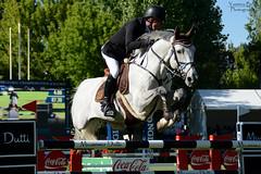 Michael Whitaker riding Valentin R (yasminabelloargibay) Tags: horse caballo cheval grey cavalier cavallo cavalo pferd equestrian equine hest gct paard showjumping hpica horserider showjumper equestrianism equitacion hipismo michaelwhitaker globalchampionstour ccvm