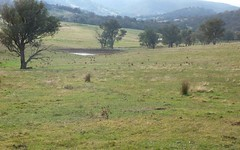 Lot 3 Altmeier Lane, Splitters Creek NSW